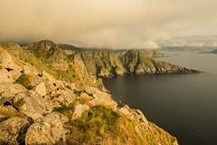 Island Runde (felix.baeuml) Tags: runde puffins birds norway island landscape photography nikond750