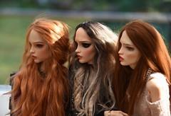 The Girls (stashraider) Tags: pashapasha resin ball jointed doll megfashiondoll wigs pasha the ugliest wife