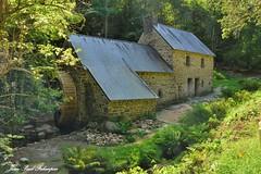 Moulin de Rossulien  -  Plomelin /  Finistère  - Bretagne         Bretagne (jean-paul Falempin) Tags: moulin calederossulien bois odet moulinàaubes moulinderossulien plomelin finistère bretagne rusruisseaux nikonpassion