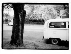 VW Bus w. Tree (Robert Drozda) Tags: portland oregon street tree neighborhood van vwbus bw monochrome olympusxa2 ilfordhp5 film bluemooncamera drozda