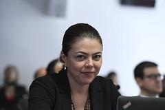 CRE - Comissão de Relações Exteriores e Defesa Nacional (Leila do Vôlei (Leila Barros)) Tags: cre audiênciapúblicainterativa vítima tragédia acidente avião chapecoense senadoraleilabarrospsbdf brasília df brasil