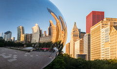 Chicago: Cloud Gate (romanboed) Tags: leica m 240 summilux 50 asph usa illinois chicago summer city street river morning dawn light skyscrapers cloud gate millennium park bean reflection