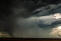 Storm With Heavy Rain (Markus Branse) Tags: beach lee point darwin northern territory austral australia aussie oz trees strand bäume baum tree sand wasser water see sea meer ocean ozean ozeanien natur nature regen rain shower storm gewitter thunder thunderstrom