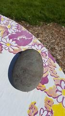 rock & cloth (Mamluke) Tags: mamluke minnesota stone rock cloth tablecloth table curved curve rounded floral purple poupre piedra pietra stein steen pierre