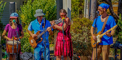 2018 Street Fair--DSC8084--Port Orford, OR OR (Lance & Cromwell back from a Road Trip) Tags: streetfair2018 portorford currycounty oregon portorfordheads music entertainment sony sonyalpha emount a7ii 24240mm fe24240mm 24240mmlens event