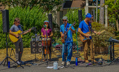 2018 Street Fair--DSC09810--Port Orford, OR (Lance & Cromwell back from a Road Trip) Tags: streetfair2018 portorford currycounty oregon portorfordheads music entertainment sony sonyalpha emount a7ii 24240mm fe24240mm 24240mmlens event