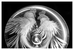 Fighting cocks (leo.roos) Tags: bowl schaal kosta kostaboda glassart glaskunst glasriket kingdomofcrystal noiretblanc glas sonya lens kunst a900 minolta mcrokkorpg5812 amount sverige sweden zweden zwedenaugustusseptember2011 darosa leoroos