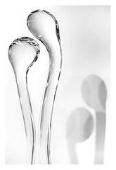 Organic glass (leo.roos) Tags: bw prime compo manu schaduw glas vorm glaskunst abstra lichtsch arty curv minolta sweden sverige amount zweden a900 darosa mcrokkorpg5812 leoroos zwedenaugustusseptember2011 noiretblanc kosta glassart kostaboda glasriket kingdomofcrystal