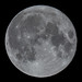 Full Moon, 99,8%