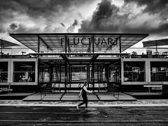F|LUCT|UART| (Daniel_Hache) Tags: man urban urbain art danielhache blackwhite homme centre center bw fluctuart quai noirblanc paris