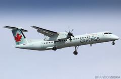C-GJZN Air Canada Express Bombardier Q400@YYJ 20Aug19 (Spotter Brandon) Tags: cgjzn aircanada aircanadaexpress bombardier q400 dh8d dash8 dehavillandcanada jazz landing yyj cyyj victoria