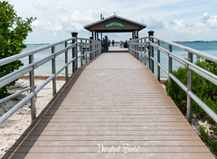 SANIBEL City Pier (Daryshoot) Tags: sanibel floride florida usa daryshoot sony sonyilce7rm3 beach water sky sanibelcitypier