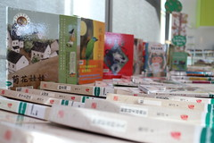 Stories in Chinese donated Chinese Books (7)