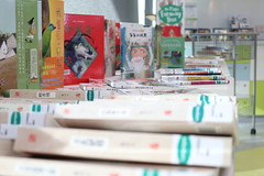 Stories in Chinese donated Chinese Books (1)