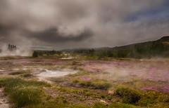 The earth is a laundry room (Zoom58.9) Tags: sky clouds hills grasses flowers fog steam landscape nature geyser outside europe europa iceland himmel wolken hügel gräser blumen nebel dampf landschaft natur geysir draussen island sony haze dunst