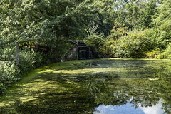 Victoria Park Lake (London Less Travelled) Tags: uk unitedkingdom britain england london eastlondon bethnalgreen towerhamlets city urban water lake park victoriapark reflection