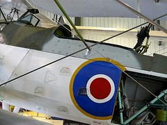 "Fairey Swordfish Mk III 7 • <a style=""font-size:0.8em;"" href=""http://www.flickr.com/photos/81723459@N04/48590148936/"" target=""_blank"">View on Flickr</a>"