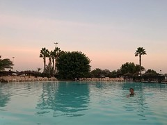 #africa #spain # #canaryislands #fuerteventura #hotel #pool #palmtrees #🌴 #relax #sport #islascanarias #sunset #swimming #tree #vacation #travel #trees #basin #girl #lategram #pink #blue #sky (pinus.acer) Tags: africa spain canaryislands fuerteventura hotel pool palmtrees 🌴 relax sport islascanarias sunset swimming tree vacation travel trees basin girl lategram pink blue sky
