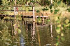 мостки (snd2312) Tags: finland suomi summer nature luonto kesä outdoors