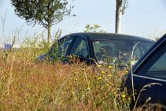 La-Rivière-de-Corps 2 August 2019 016 (paul_appleyard) Tags: jaguar abandoned car larivièrede corps aube france august 2019