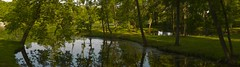 beautiful panorama of the nature of the Gatchina park (a_d_andreev) Tags: panorama park nature grass light tree sunny outdoor branches colors grassland leaves naturalenvironment pacificnorthwest peacefulatmosphere plants road shadows shrubs tranquility trees trunks background green sun spring sunlight summer environment landscape scenic sky city meadow forest magic banner scenery wood beech trunk wallpaper deciduous foliage pond water reservoir gatchina