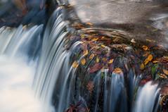 Venford Brook, Dartmoor 2 (chris-parker) Tags: venford brook dartmoor river stream autumn fall water waterfall slow shutter speed