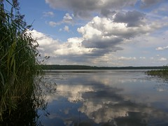 Juglas Lake (galterrashulc) Tags: latvia riga jugla rīga latvija lake landscape nature water summer clouds reflection swamp grass irina galitskaya galterrashulc olympus sp550uz