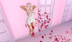 Apple Heart Inc Angela Outfit (PinkangelIndigo) Tags: appleheartinc ascendant backdropcove bodylanguage catwa maibilavio maitreya messy rhude sintiklia veechi