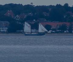 Sail training ship Luciana in Öresund (frankmh) Tags: ship tallship sailtrainingship luciana öresund