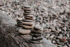 small-rock-piles-on-log (1) (University of Bath) Tags: rocks pebbles balanced log