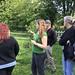 Runach Arainn forest garden 2