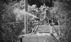 (mblaeck) Tags: blackandwhite monochrome builder building saw sawdust wood timber construction bw manatwork