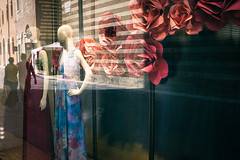 La vie en rose (Roberto Spagnoli) Tags: rose flowers fotografiadistrada streetphotography color dummy mannequin window vetrina reflection riflesso couple summer italy urbanpoetry elegance