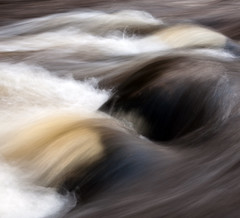 Teign Gorge, Fingle Bridge, Devon 28 (chris-parker) Tags: white deer albino fingle bridge river teign dartmoor devon stream water waterfall slow shutter speed