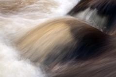 Teign Gorge, Fingle Bridge, Devon 26 (chris-parker) Tags: white deer albino fingle bridge river teign dartmoor devon stream water waterfall slow shutter speed