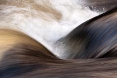 Teign Gorge, Fingle Bridge, Devon 24 (chris-parker) Tags: white deer albino fingle bridge river teign dartmoor devon stream water waterfall slow shutter speed