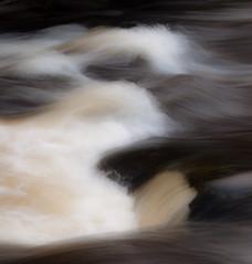 Teign Gorge, Fingle Bridge, Devon 4 (chris-parker) Tags: white deer albino fingle bridge river teign dartmoor devon stream water waterfall slow shutter speed