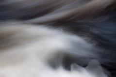 Teign Gorge, Fingle Bridge, Devon 3 (chris-parker) Tags: white deer albino fingle bridge river teign dartmoor devon stream water waterfall slow shutter speed