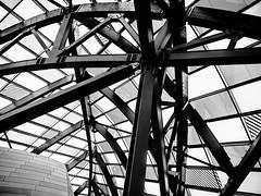 VaultCenter.jpg (Klaus Ressmann) Tags: klaus ressmann omd em1 abstract fparis france fondationvuitton architecture blackandwhite cityscape contemporary design flccity klausressmann omdem1