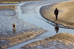 One dog and his man (Lord Skully) Tags: watercourse naturalbeauty coast sands coastal coastline riverkent estuary dog canine pooch man person male walker water channels lancs touristattraction october autumn england sandy sakhalinhusky pedigree purebred animal white reflection frankpickavant outdoor outside europe britishisles britain canon picturesque peaceful photograph picture image photography flickr day daylight westcoast northwest lowtide redrosecounty foreshore geotagged uk unitedkingdom aonb morecambebay intertidal mudflats shiftingsands naturallight mirrorimage inlet tidal dogowner shore strand seashore seaside blue light photo