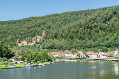 Zwingenberg Castle at the Neckar River - August 2019 III (boettcher.photography) Tags: zwingenberg neckarodenwaldkreis neckartal neckar river fluss valley landschaft landscape landschaftsfotografie landscapephotography wald forest view aussicht august sommer summer kurpfalz sashahasha boettcherphotography boettcherphotos 2019 castle burg zwingenburg zwingenbergcastle schlosszwingenberg schloss