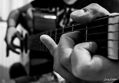"Guitar <a style=""margin-left:10px; font-size:0.8em;"" href=""http://www.flickr.com/photos/183715344@N06/48591994767/"" target=""_blank"">@flickr</a>"