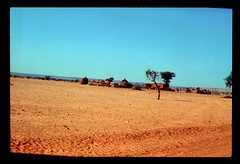 Niger Village 2 (ubqlfulp16) Tags: sahara algeria niger cameron nigeria chad
