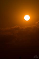 IMG_S2-15027 (Max Hendel) Tags: sunsetofbauru sunset sun sky luz light sol pôrdosol fimdatarde céu tonsdocéu bymaxhendel bymaxhendelphotography pormaxhendel maxhendelphotography maxhendelphotostream tamron18270mm canon7dmarkii