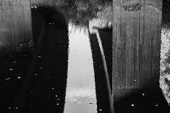 River (Jontsu) Tags: river joki suomi finland bw blackandwhite blackwhite fuji fujifilm xt3 helios 58mm nature luonto reflection