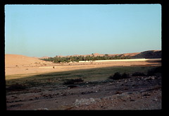 Sahara Oasis (ubqlfulp16) Tags: sahara algeria niger cameron nigeria chad