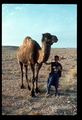 Sahara Camel Boy (ubqlfulp16) Tags: sahara algeria niger cameron nigeria chad