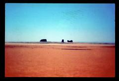 Sahara Sculptures by Wind and Sand (ubqlfulp16) Tags: sahara algeria niger cameron nigeria chad