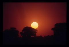 Cameroon Sunset 1 (ubqlfulp16) Tags: sahara algeria niger cameron nigeria chad