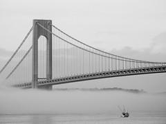 Fog Under The Verrazzano-Narrows Bridge; Brooklyn, New York (hogophotoNY) Tags: verrazzanonarrowsbridge verrazzanonarrows bridge nybridge fog foggy weather hogo hogophoto ny brooklyn brooklynny nystate newyorkstate